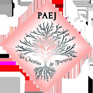 Point Accueil Ecoute Jeunes 09 Logo
